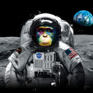 Apollo 11 - Poster PREMIUM authentique de Patrice MURCIANO